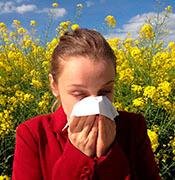 Аллергическая реакция на пыльцу